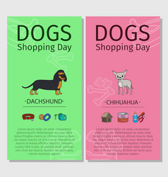 Dachshund chihuahua dog shopping day vector