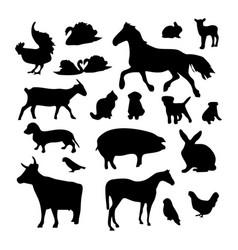 Domestic animals image vector