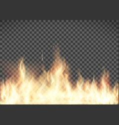 flame texture fire isolated on transparent vector image