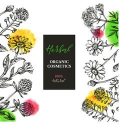 hand drawn sketch waytercolor wildflowers vector image