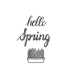 hello spring calligraphy hand-drawn vector image