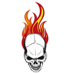 Human skull with flames and fire vector