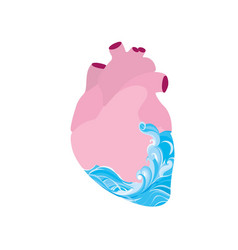 in the heart of the sea vector image