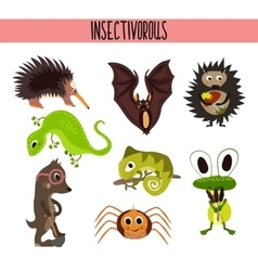 Cartoon Set of Cute Animals insectivores living in vector image vector image