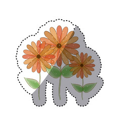 Sticker faded set collection sunflowers floral vector