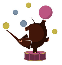 Cartoon elephant circus actor juggler acrobat vector