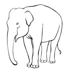 Contour elephant vector