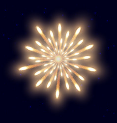 fireworks on the night sky background vector image