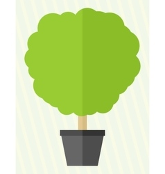 Flat style tree in a pot vector