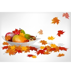 Fruits and autumn leaves on a plate vector image