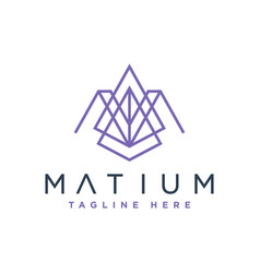 Modern logo initial letter am vector