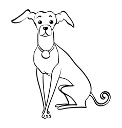 sketch funny Italian Greyhound dog sitting vector image vector image