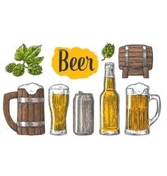 Beer class can bottle barrel vector image