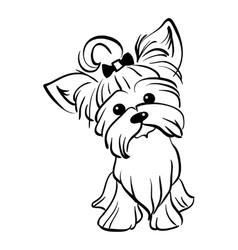 sketch funny Yorkshire terrier dog sitting vector image vector image