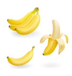 banana fruit set realistic icons vector image