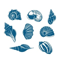 Blue shells and mussels set vector image