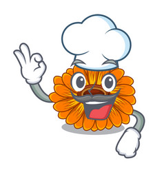 Chef calendula flowers in a cartoon basket vector