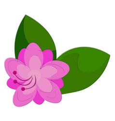 Clipart an azalea flower that looks adorable vector