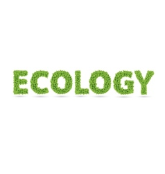 Ecology text of green leaves vector image