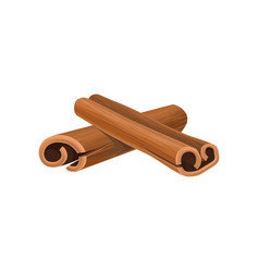 Icon of two rolled cinnamon sticks cooking vector