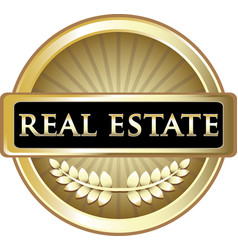 Real estate gold icon vector