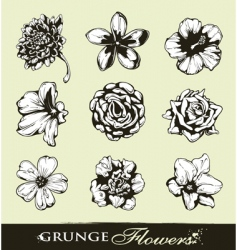 set of grungy flowers vector image vector image