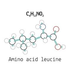 C6H13NO2 amino acid Leucine molecule vector