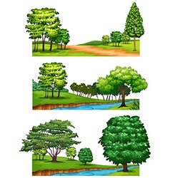 Nature scenes with trees and rivers vector image