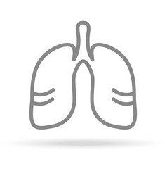 human lungs pulmonology icon in trendy thin line vector image