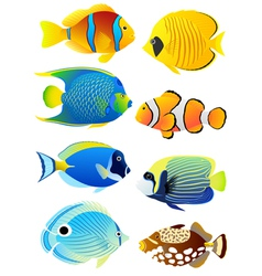 Set of tropical fish vector image vector image