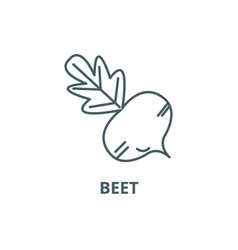 beet line icon beet outline sign concept vector image
