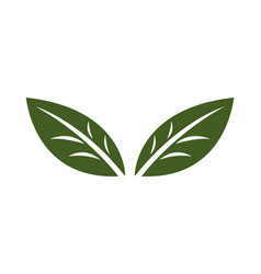 Design leaf for corporate company vector