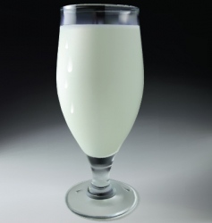 glass of milk vector image