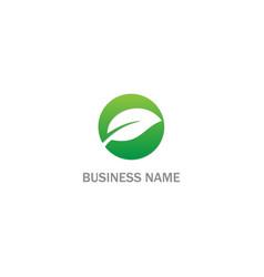 green leaf eco logo vector image