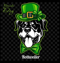 head a rottweiler dog and elements st vector image