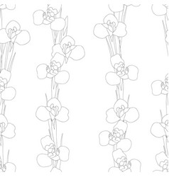 iris flower outline seamless on white background vector image