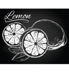 Lemons with leaves vector image