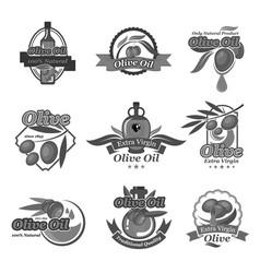 olive oil label and badges set design vector image