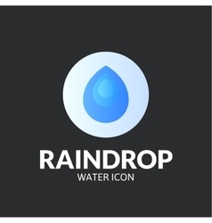 Raindrop logo template vector image