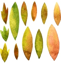 watercolor green leaves vector image