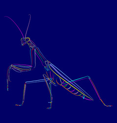 Insect 1-11 vector