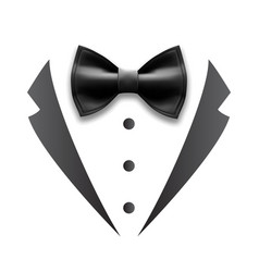 black details of man wedding suit tuxedo vector image