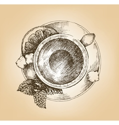 Cup of tea with mint and lemon top view vector