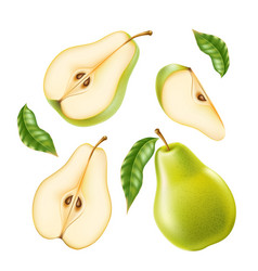 realistic green ripe pear healthy food vector image