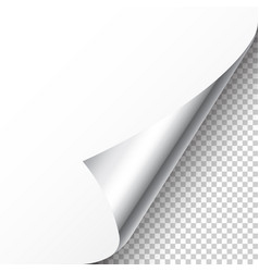 Realistic silver curled page corner with shadow vector
