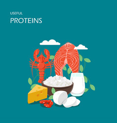 useful proteins flat style design vector image