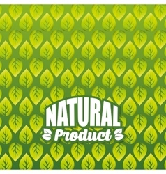 Organic and Natural Product background vector image vector image