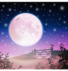 Moon and Night Sky vector image vector image