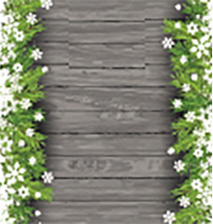 christmas tree branches on wood background 0411 vector image