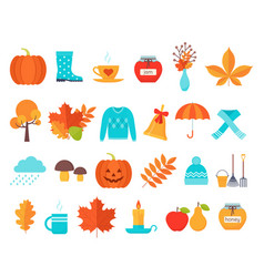 Autumn collection decorative elements flat design vector